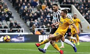 Prediksi Bristol City vs Wolverhampton Wanderers 17 Februari 2019